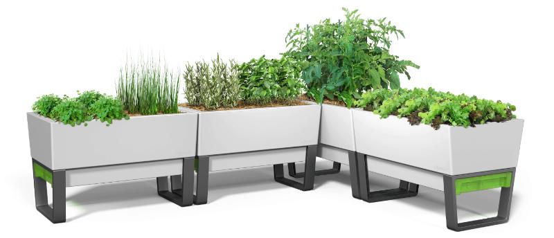 Glow Pear Urban Garden Self Watering Planter White