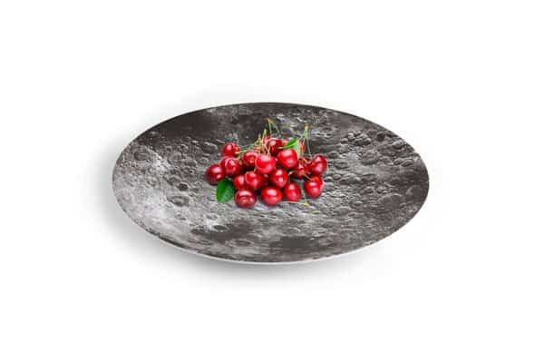 Kikkerland Moon Melamine Serving Bowl Nature Inspired Design