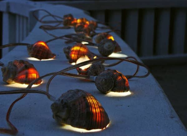 More than Sea Glass Sea Shell Garland Strand of Lights Ambient Glow