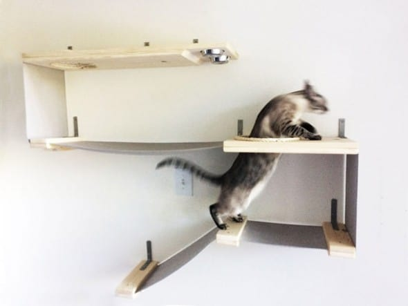 Catastrophicreations Cat Hammock Feeder Station Pet Fixture