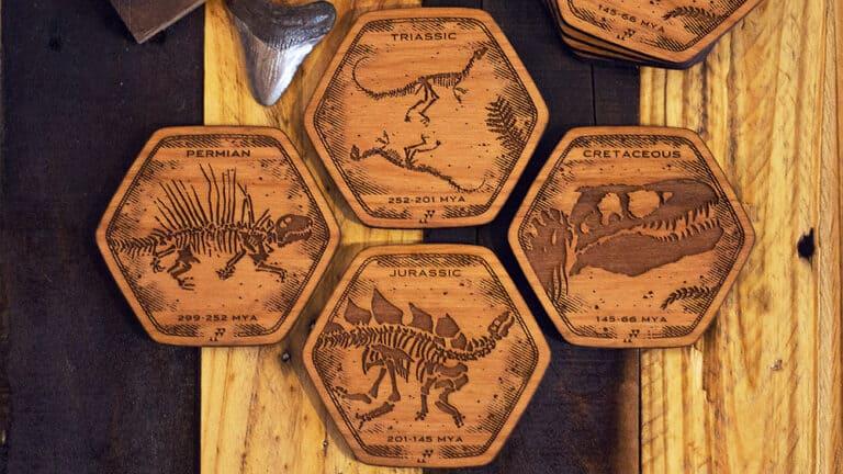 Fringe Focus Dinosaur Fossil Coasters Dino Periods