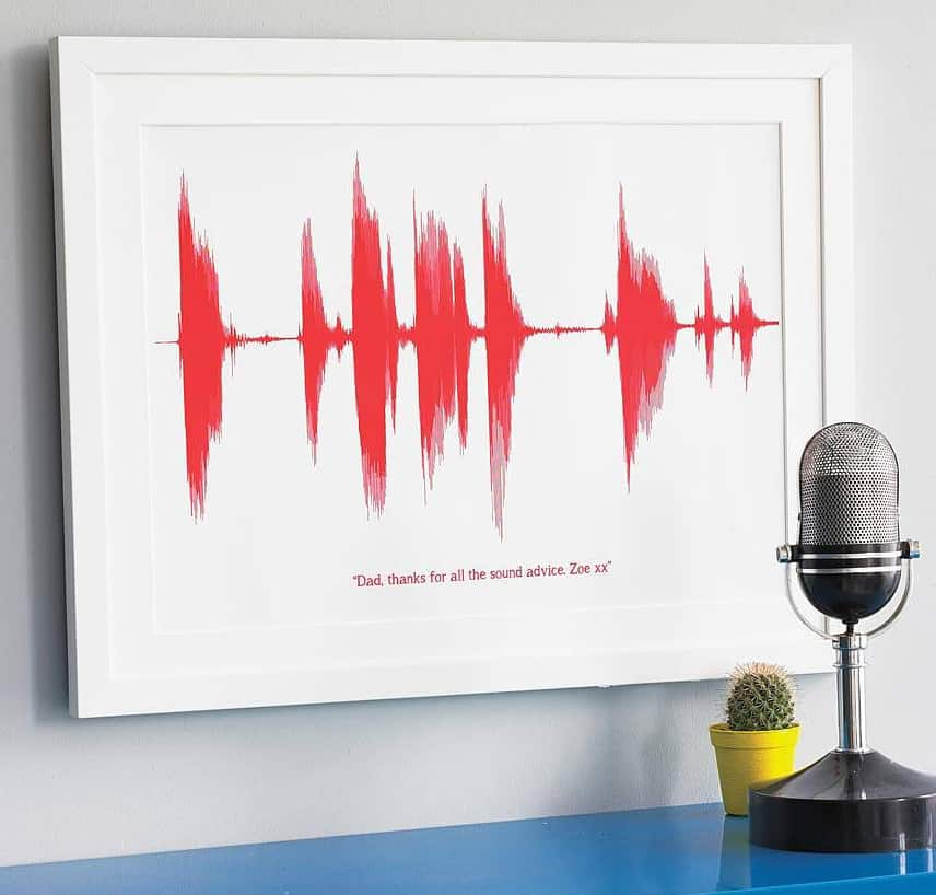 Newton and the Apple Your Voice Sound Wave Print Nostalgic Gift Idea