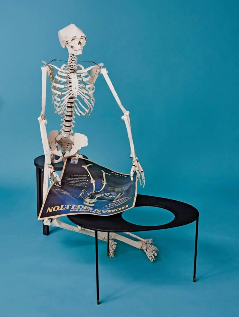 Taschen Build your Own Life Sized Human Skeleton Book Poseable Anatomy