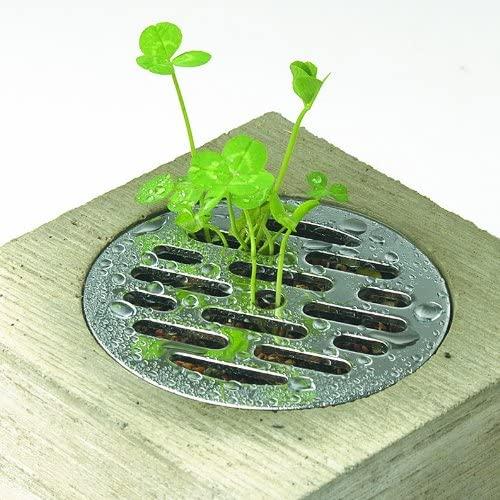Pull+Push Concrete Hasui Planter Unique Small Pot