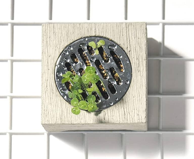 Pull+Push Concrete Hasui Planter Weird Home Decoration