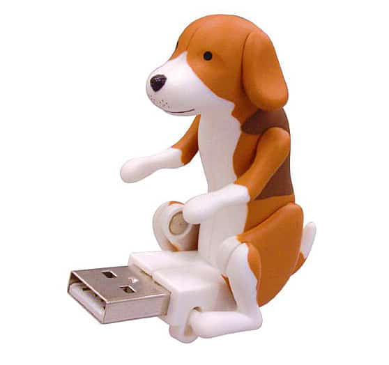 USB Humping Dog Beagle