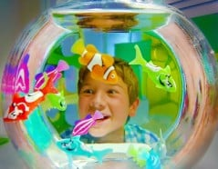 Amusing pet fish just add battery.