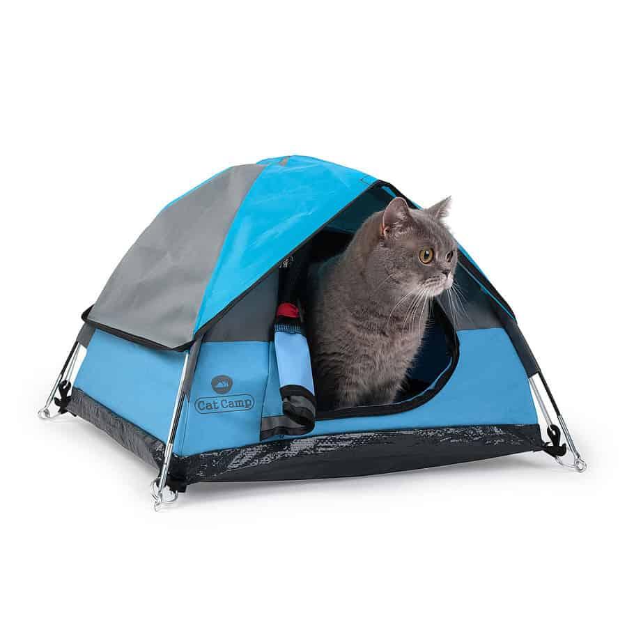 Cat Camp Cat Tent Noveltystreet