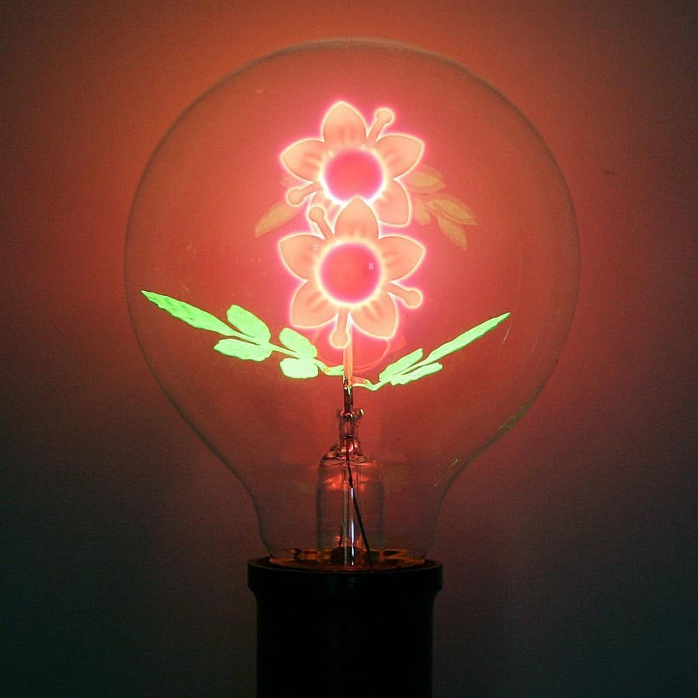 Light your home with flower power.