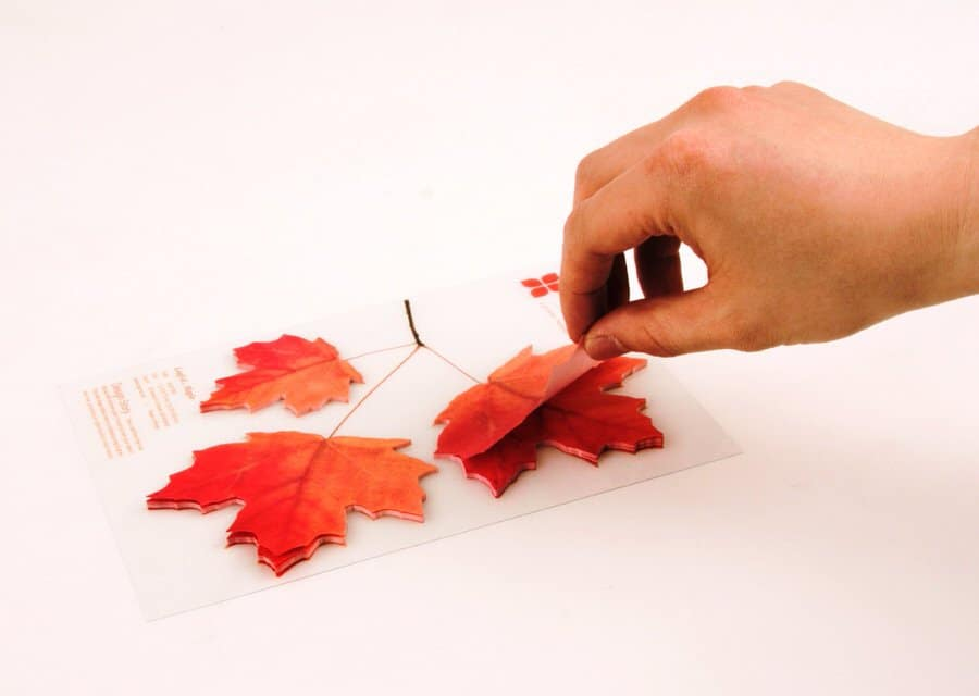 Red Maple Leaf Sticky Notes Cute Novelty to Buy