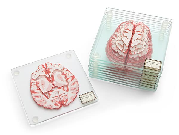 ThinkGeek Brain Specimen Coasters Cool Gift to Buy Officemates