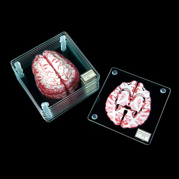 ThinkGeek Brain Specimen Coasters Gift Idea for Teachers