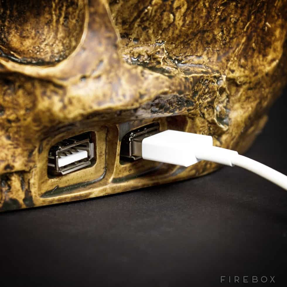 USB Skull Hub Plug