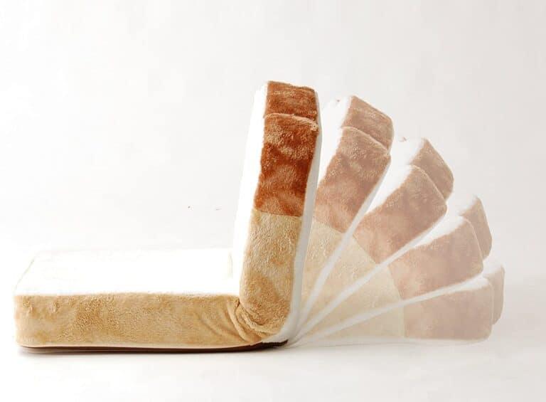 Cellutane Panzaisu Bread Floor Chair Inclination Levels