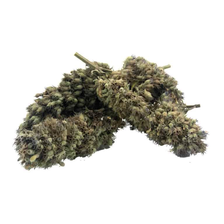 Meowijuana Catnip Buds Cat Marijuana