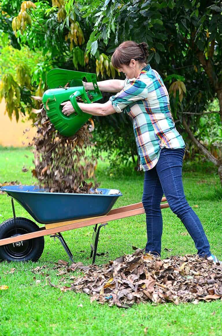 Releaf Leaf Scoops Hand Held Rakes Dry Leaves Scooper