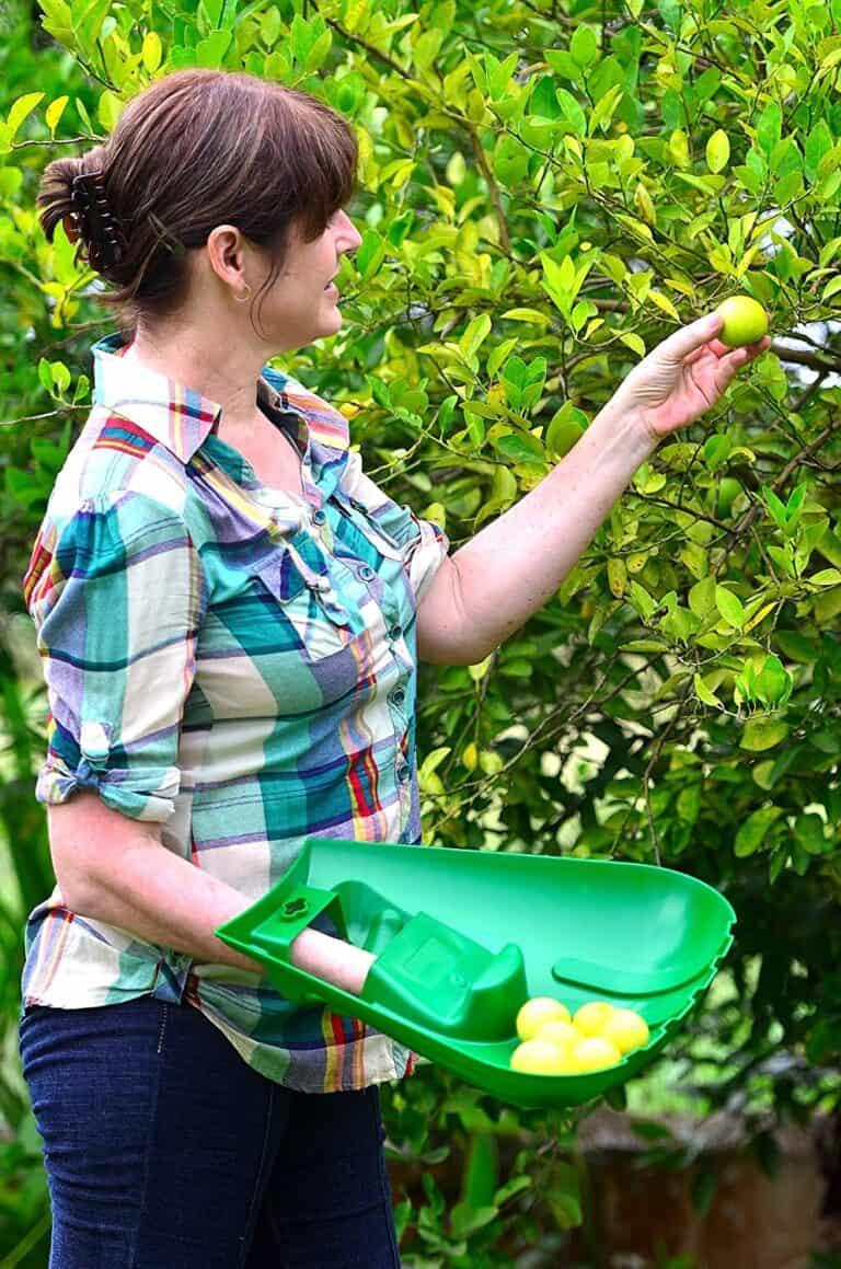 Releaf Leaf Scoops Hand Held Rakes Fruit Holder