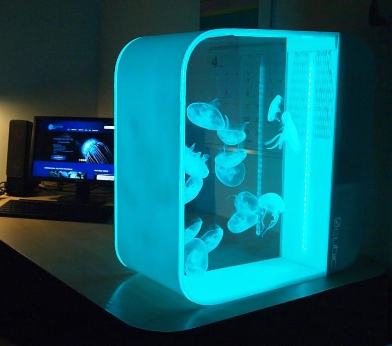 Cubic Pulse 80 Jellyfish Aquarium Cool Home Decoration