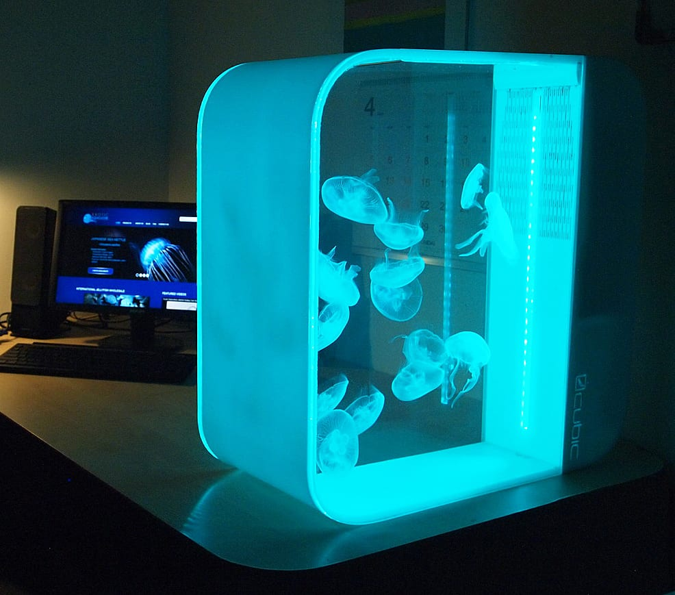 Cubic Pulse 80 Jellyfish Aquarium Noveltystreet