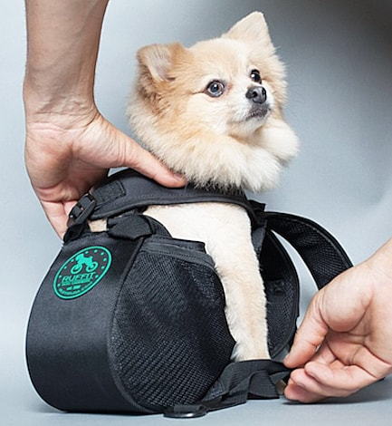 Ruffit Dog Carrier Buy Cool Animal Stuff