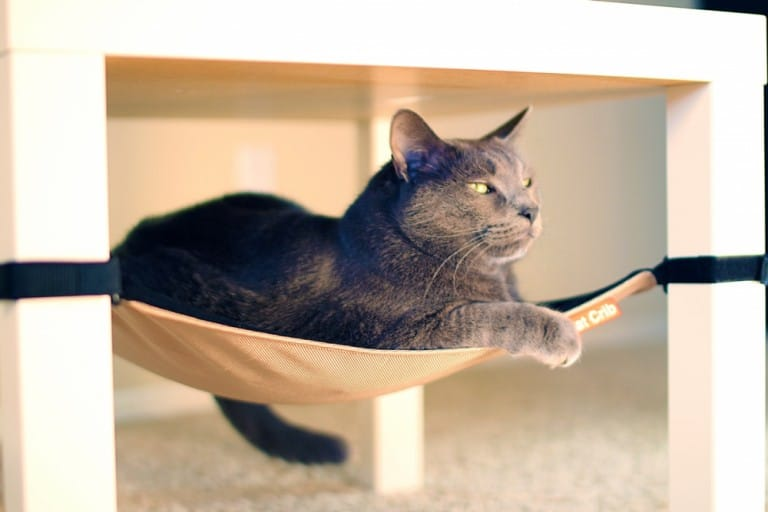 Cat Crib Cat Hammock Feline Furniture to Buy
