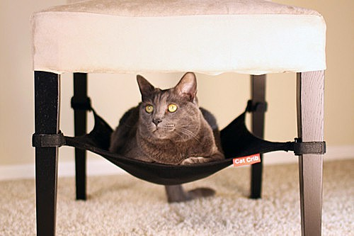 Space-saving cat hammock your feline will love!