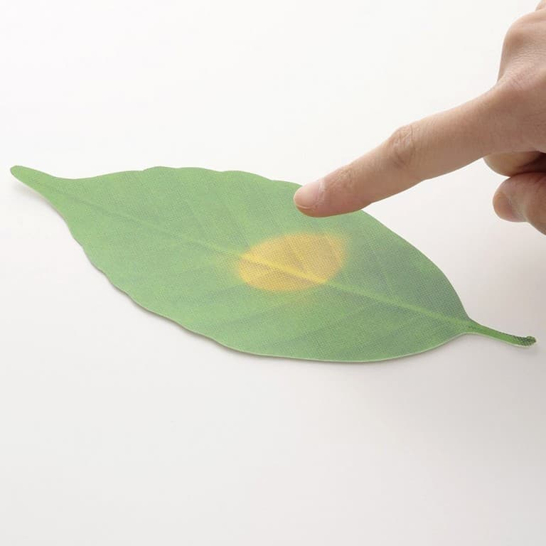 Hideyuki Kumagai Leaf Thermometer Paper Fun Way to Measure Temperature
