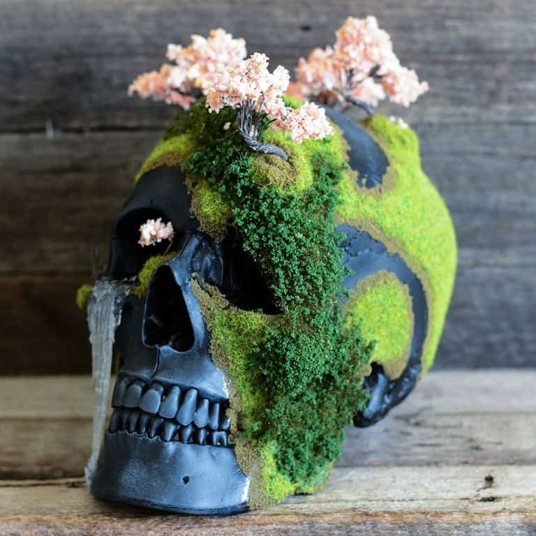 Jack of the Dust Cherry Blossom Bonsai Mountain Skull Household Display