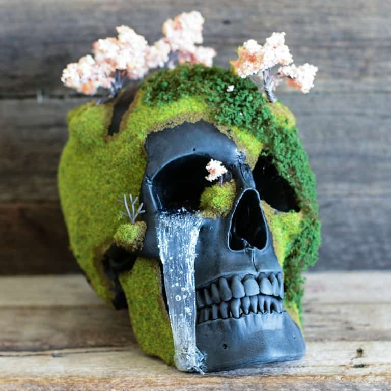 Jack of the Dust Cherry Blossom Bonsai Mountain Skull Nice Decor