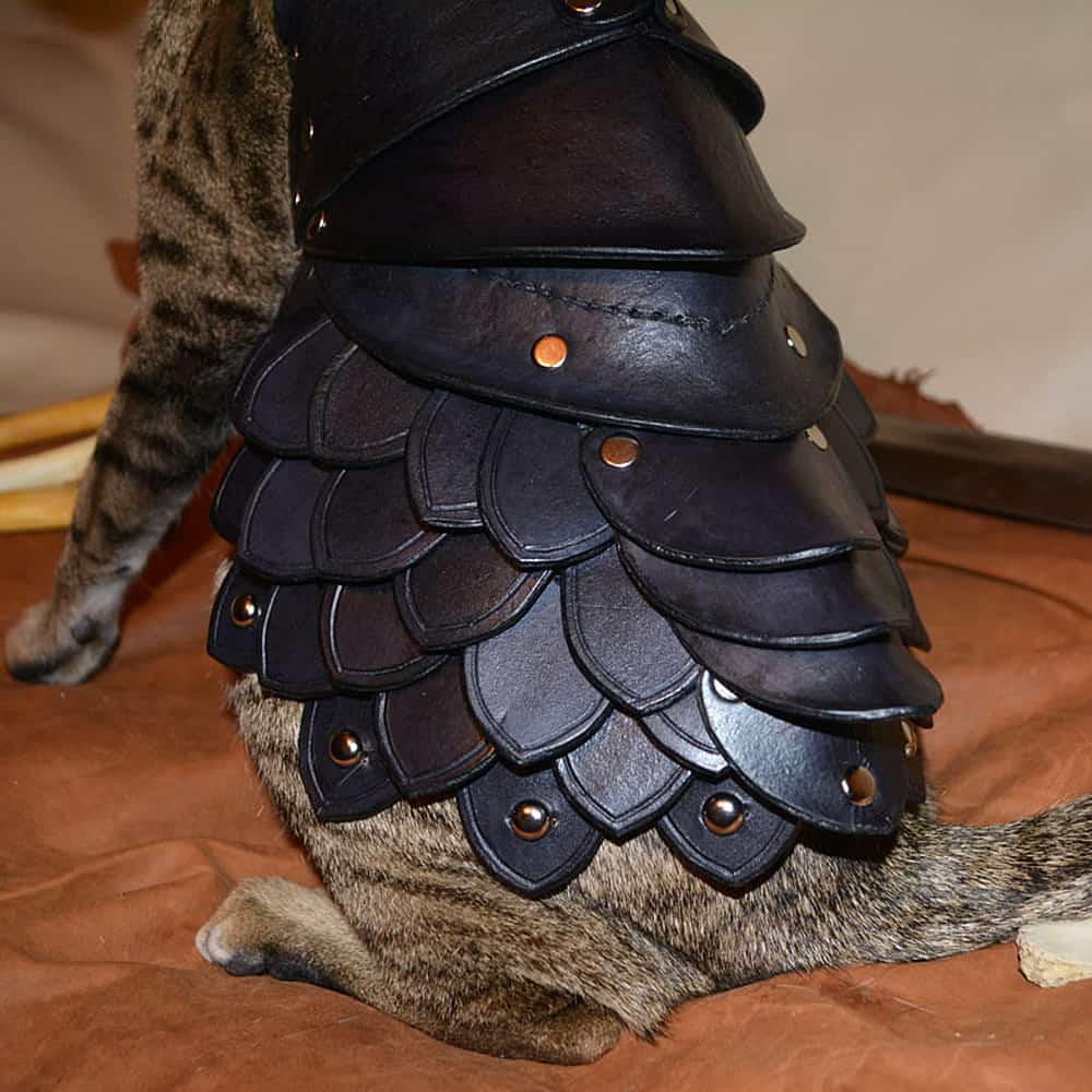 Savage Punk Cat Battle Armor Cute Pet Clothes