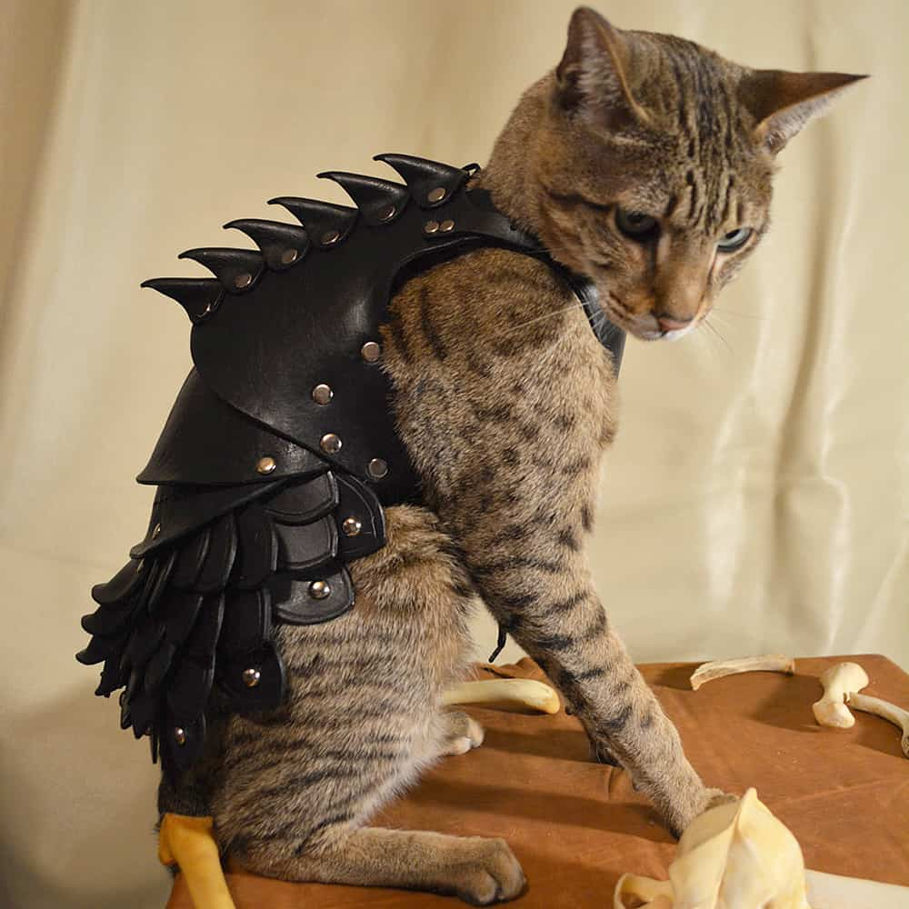 Savage Punk Cat Battle Armor Novelty Item