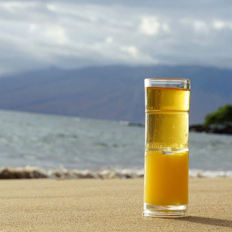 The Snapshotr Dual-Chamber Shot Glass Nice Drinkware