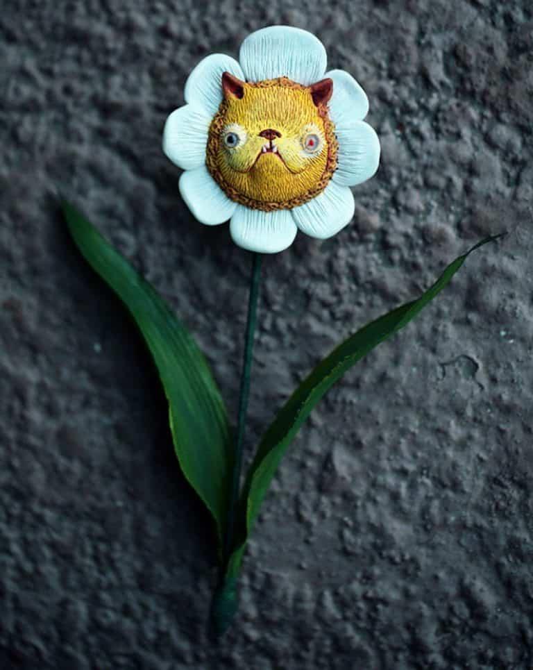 Chercheto Kitty Flower Good for Flower Lover