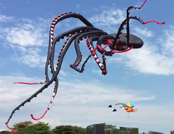 Giant Octopus Kite Cool Gift Idea