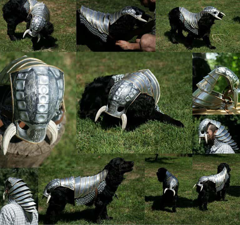 Lebovskiart Fantasy Dog Knight Armor Nice Costume