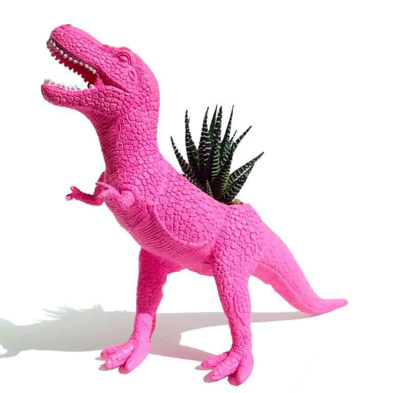 Plaid Pigeon Mac The Planted T-Rex Toy Planter Awesome Novelty Item