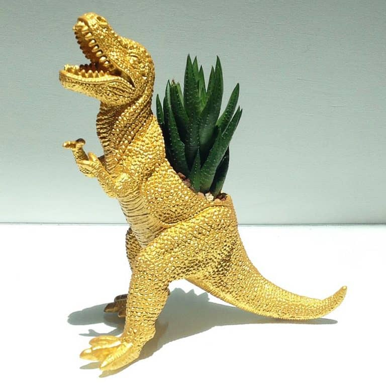 Plaid Pigeon Mac The Planted T-Rex Toy Planter Nice Gift Idea