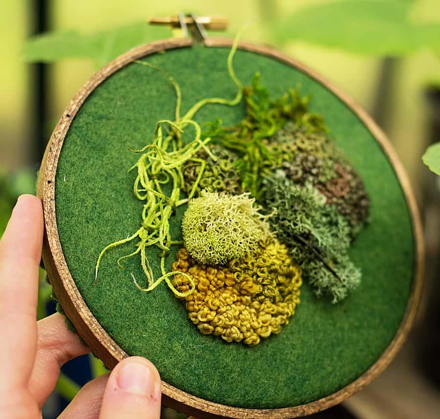 Spectremma Moss Embroidery Noveltystreet