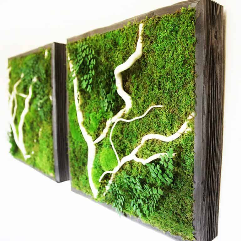 Artisan Moss No Care Green Wall Art A Nice Gift Idea