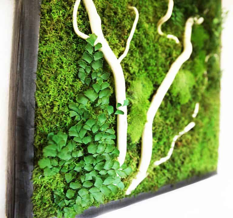 Artisan Moss No Care Green Wall Art Awesome Decoration