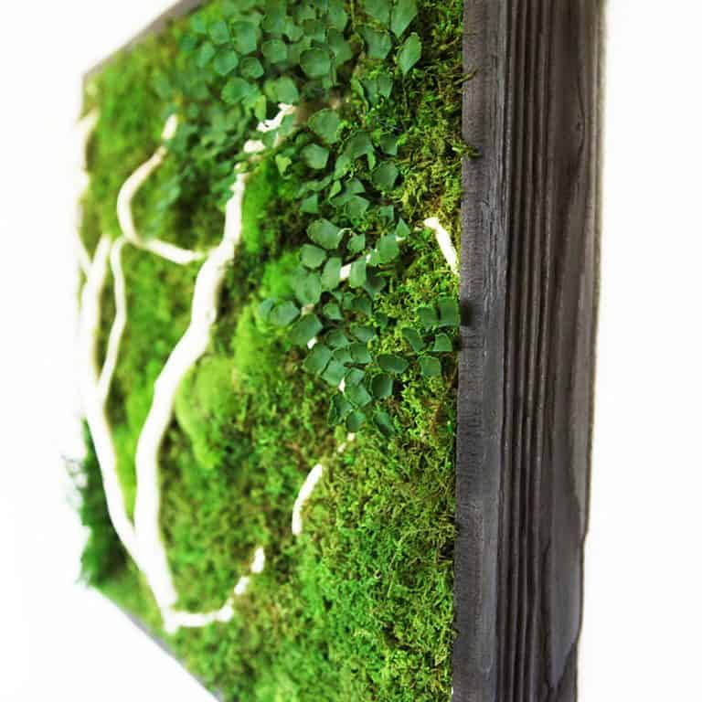Artisan Moss No Care Green Wall Art Home Decor