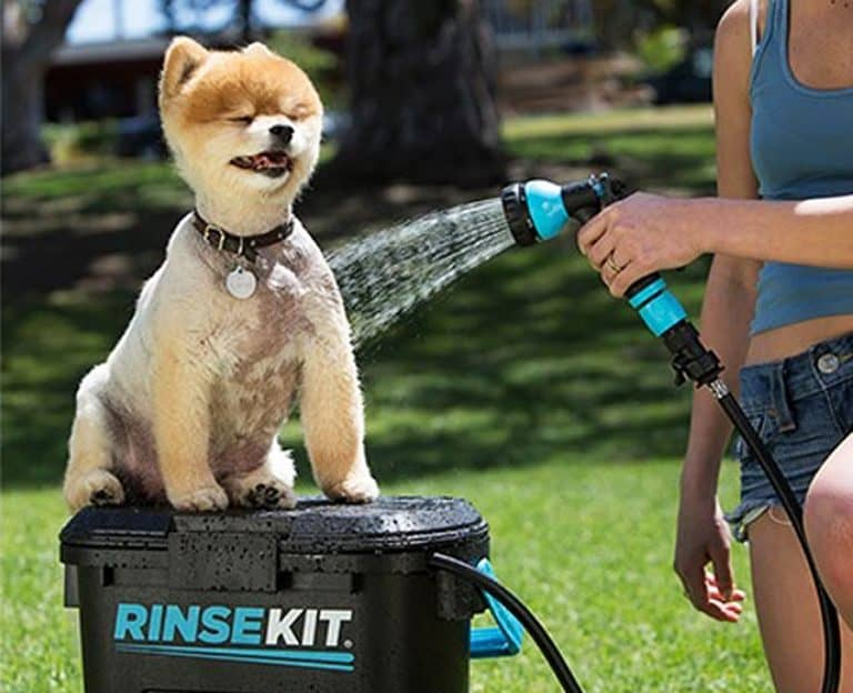 Rinse Kit Portable Sprayer Nice Washer