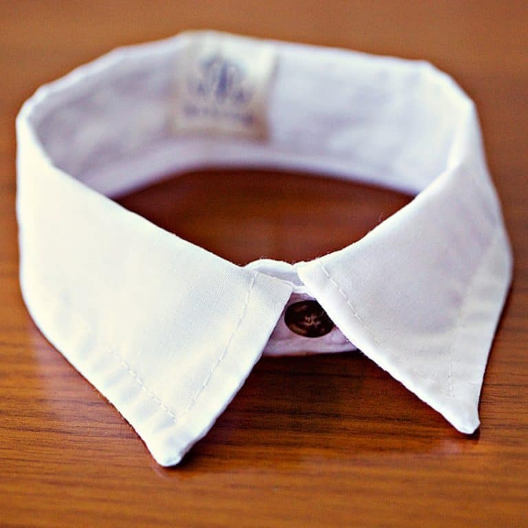 The Rover Boutique White Pointed Cat Collar Cool Pet Accessory