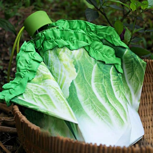 Folding Cabbage Umbrella Cool Gift for Rainy Days