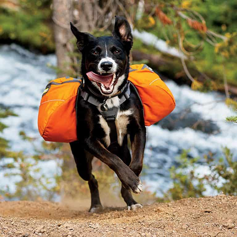 Ruffwear Approach Dog Backpack Good Load Stability