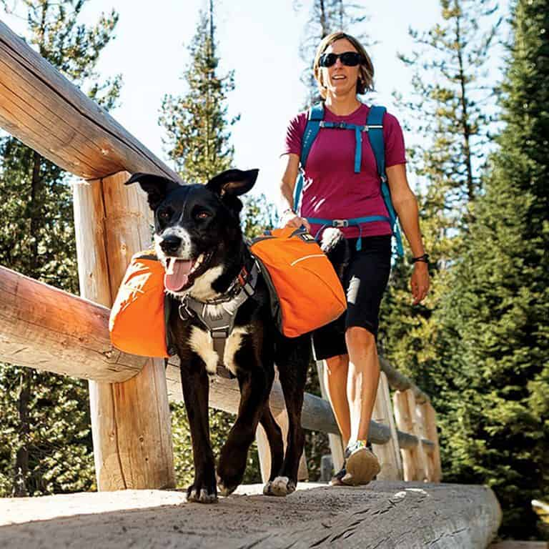 Ruffwear Approach Dog Backpack Pet Accessory