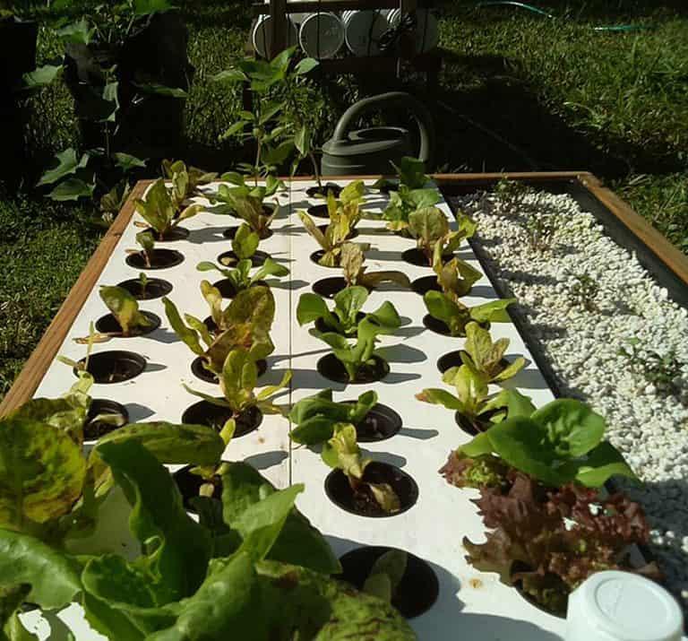 growbot-abundance-hydroponic-garden