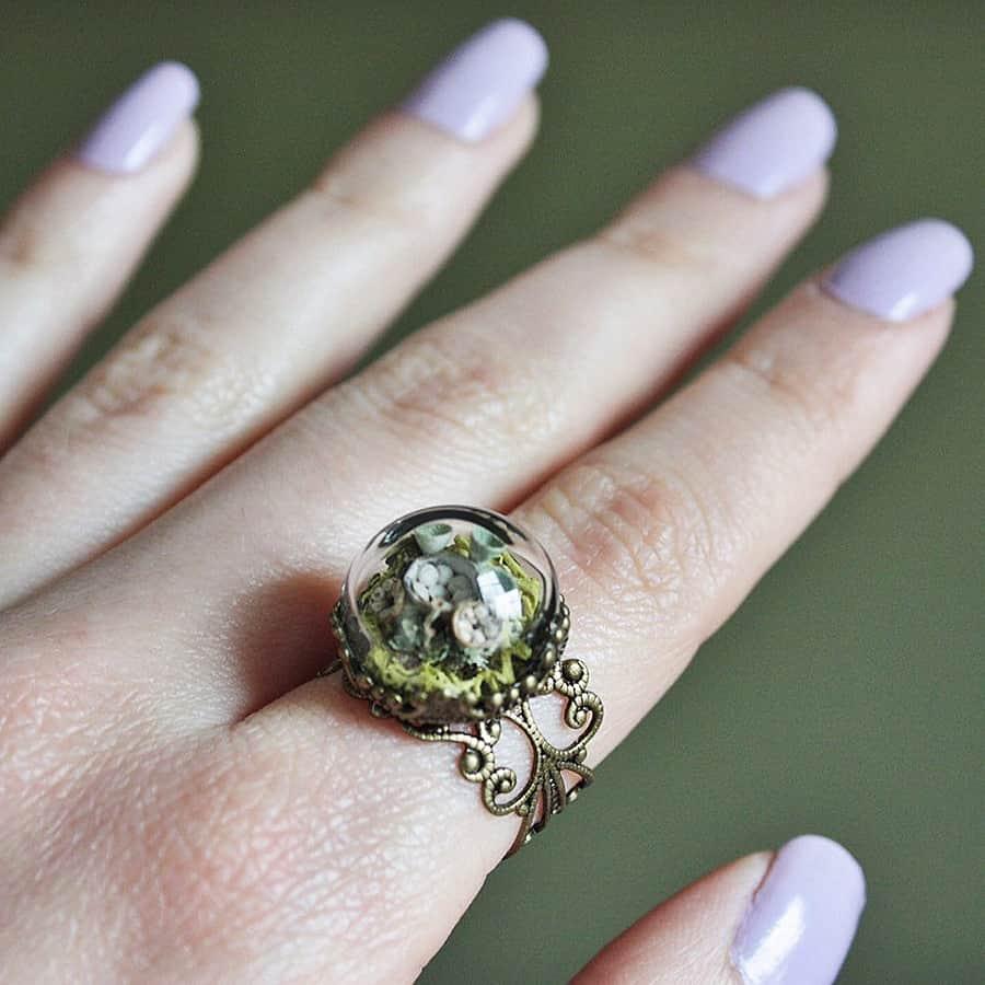 naturephilia-white-birds-nest-terrarium-ring-trumpet-lichen