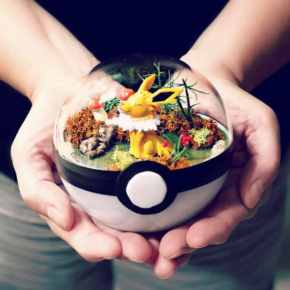 What life is like inside a Pokeball.