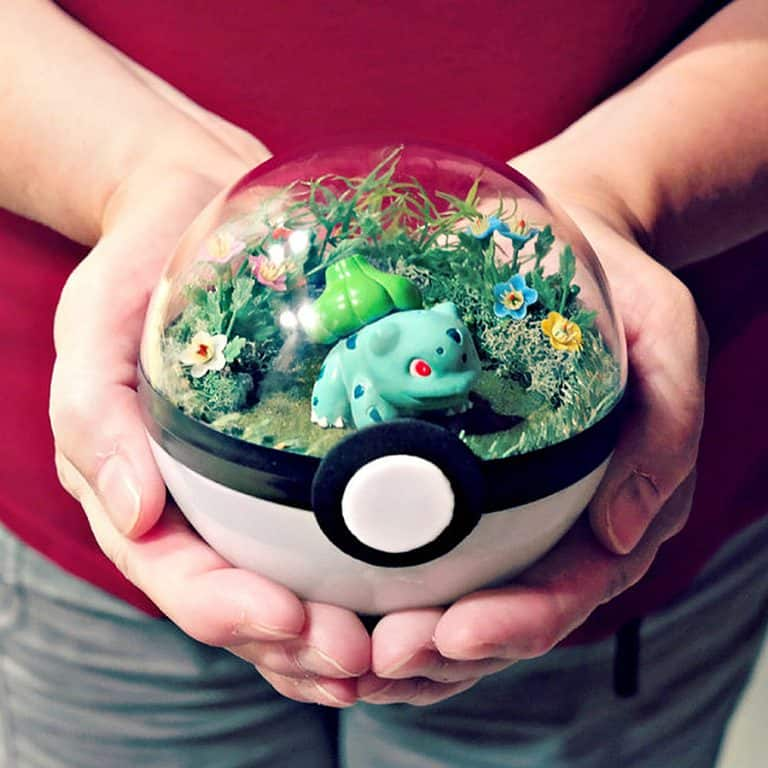 the-vintage-realm-poke-ball-terrarium-real-nature
